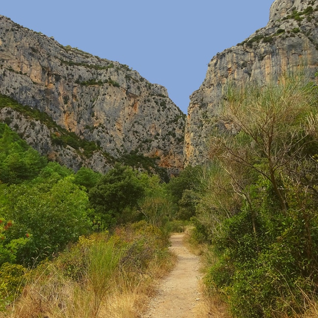 canyonin a montpellier herault languedoc roussillon 34